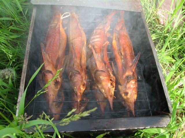 копченые рыбные деликатесы
